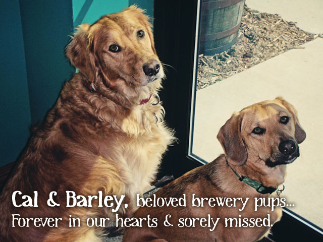 Cal&Barley